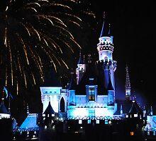 Disneyland Fireworks by dlr-wdw
