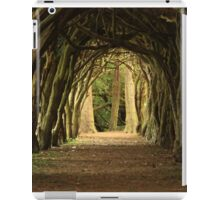 Cloister at Gormanston College iPad Case/Skin