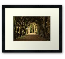 Cloister at Gormanston College Framed Print