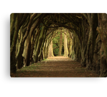 Cloister at Gormanston College Canvas Print
