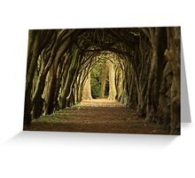 Cloister at Gormanston College Greeting Card
