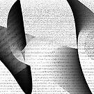 Database #3 by dominiquelandau