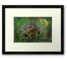 Lurking in the Undergrowth Framed Print
