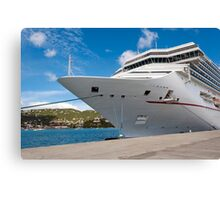 Cruise ship. Canvas Print