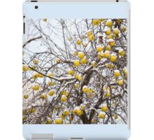 apples sag on tree in snow iPad Case/Skin