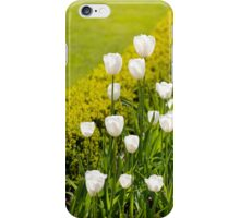 White tulips in buxus arrangement iPhone Case/Skin