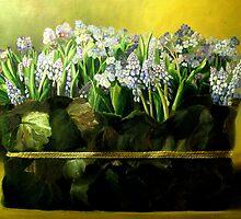 Spring by pucci ferraris