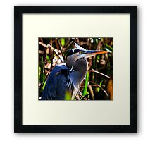 Blue WInds Framed Print