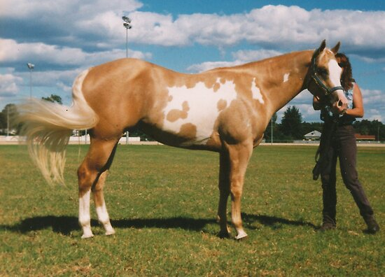 Lasting Effects - National Champion 2000 by louisegreen