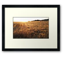 Last Rays of Summer Framed Print