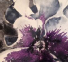 White and purple pansy Sticker