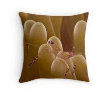 Anemone Shrimp Throw Pillow