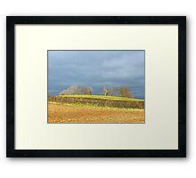 The Peace Of An Irish Landscape For Lorraine Aka Poete100 Framed Print