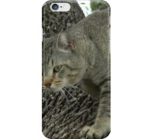 Pappa Cat Waiting in the Tree iPhone Case/Skin