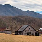 Blue Ridge Mountain Farm by Jane Best