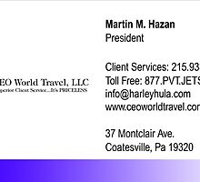 CEO World Travel by mhazan