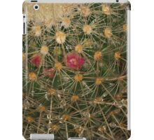 After the rain with a spike iPad Case/Skin