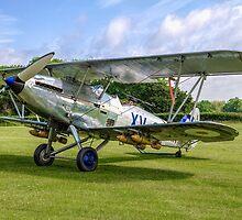 Hawker Hind K5414/XV G-AENP by Colin Smedley