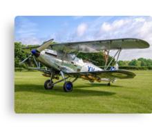 Hawker Hind K5414/XV G-AENP Canvas Print