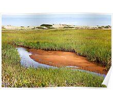 Green grass landscape Poster