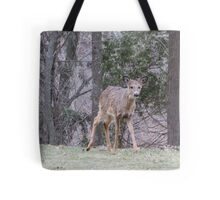 Okauchee Lake Deer Tote Bag