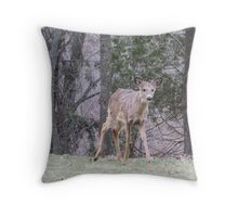 Okauchee Lake Deer Throw Pillow