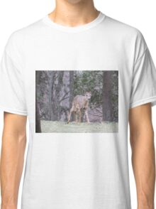 Okauchee Lake Deer Classic T-Shirt
