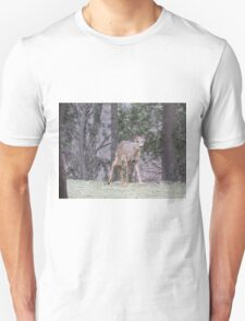 Okauchee Lake Deer T-Shirt