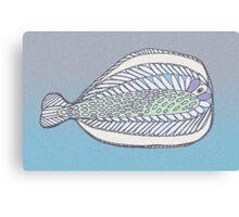 Funny Flat Fish Canvas Print