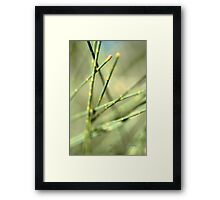Green Tangle © Framed Print