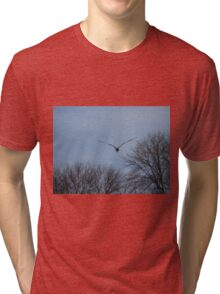 Seagull Over Trees Tri-blend T-Shirt