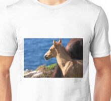 Colt By The Sea Unisex T-Shirt