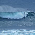 The Surfer, Margaret River, Western Australia by Adrian Paul