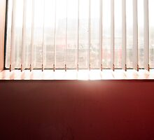 Sunlight streaming through the venetian blinds of an office window by ashishagarwal74