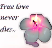 True love never dies.... by khadhy
