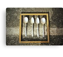 The Hall of Spoons Canvas Print