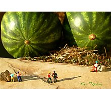 Nice Melons Photographic Print