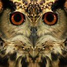 Owl by Cliff Vestergaard