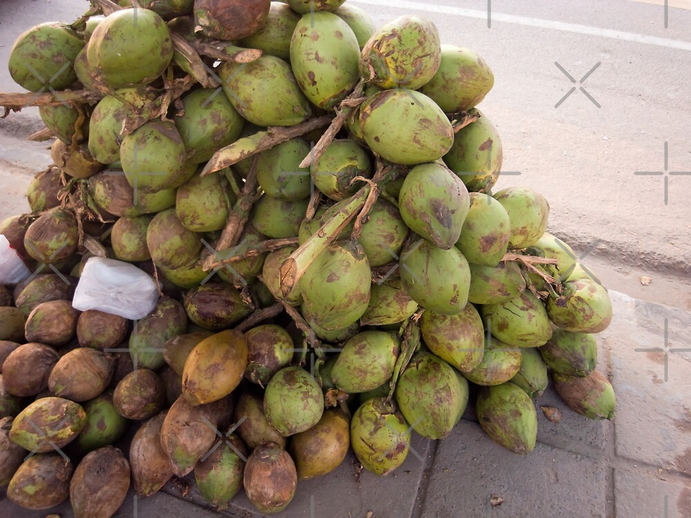 Tender coconuts ready for sale in a pile on the road side by ashishagarwal74