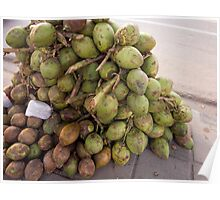 Tender coconuts ready for sale in a pile on the road side Poster