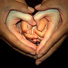 Hands of love by triciamary