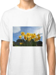 Yellow daffodil flowers in sunlight and blue sky. Classic T-Shirt