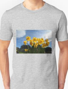 Yellow daffodil flowers in sunlight and blue sky. T-Shirt