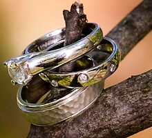 Rings by LisaRandall