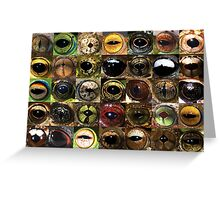 Frog eyes Greeting Card