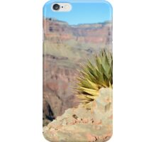 Utah Agave – Grand Canyon National Park, Arizona iPhone Case/Skin