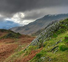 Borrowdale by Greg Artis
