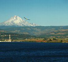 Mount  Hood  over Portland Oregon by Bellavista2