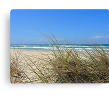Ocean outlook through the sandy reeds Canvas Print