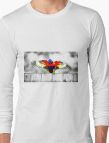 Gold Coast Rainbow Lorikeet Long Sleeve T-Shirt